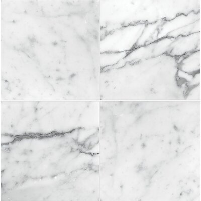 Carrara 6 x 6 Marble Field in Honed White