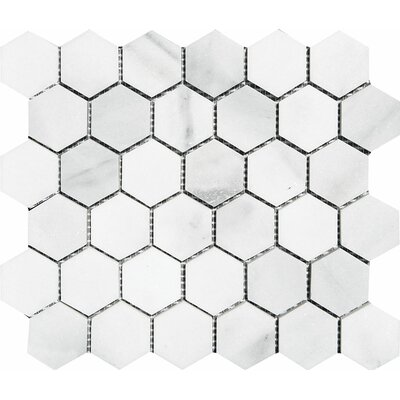 Verona Hexagon 2 x 2 Stone Mosaic Tile in Bianco Polished