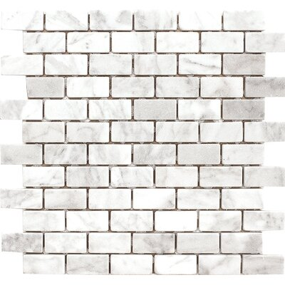 Carrara 1 x 2 Stone Mosaic Tile in White Tumbled