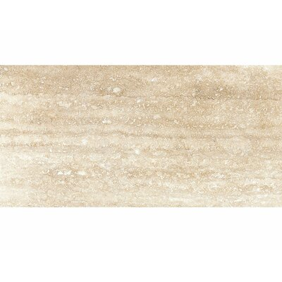 Vein Cut 24 x 12 Travertine Field Tile in Ivory Honed