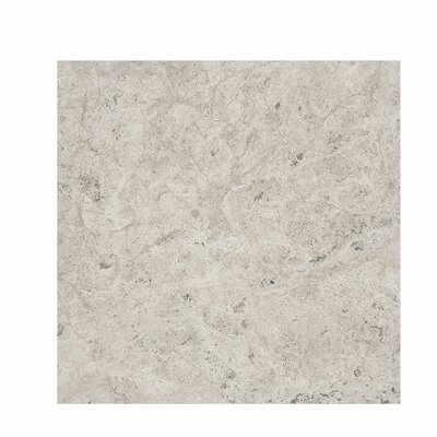 Marble 18 x 18 Stone Tile in Antique Gray Polished