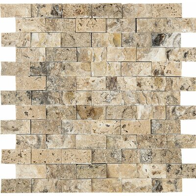 Split Face 1 x 2 Stone Mosaic Tile in Antico