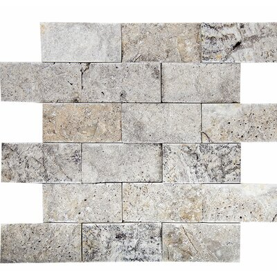 Split Face 2 x 4 Stone Mosaic Tile in Silver