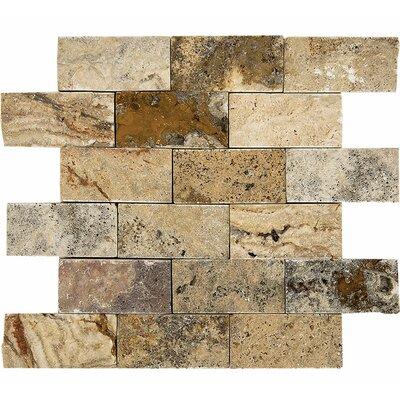 Scabos Split Face 2 x 4 Stone Mosaic Tile
