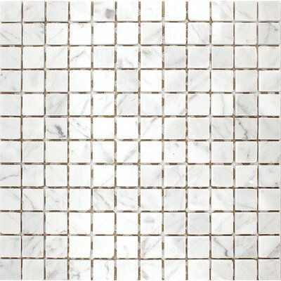 Carrara 1 x 1 Stone Mosaic Tile in White Polished