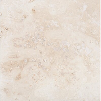 Classic 24 x 24 Travertine Field Tile in Honed Ivory