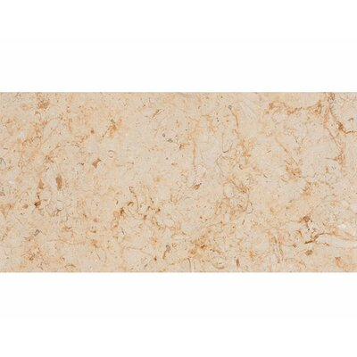 Lyon 12 x 24 Stone Field Tile in Honed Beige