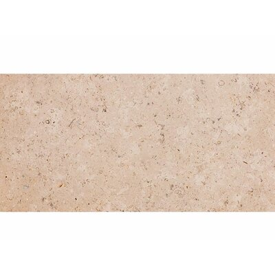 Dijon 12 x 24 Stone Field Tile in Brushed Beige