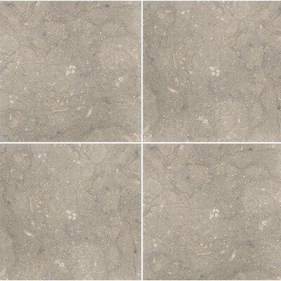 Sea Grass 12 x 12 Limestone Field Tile in Gray
