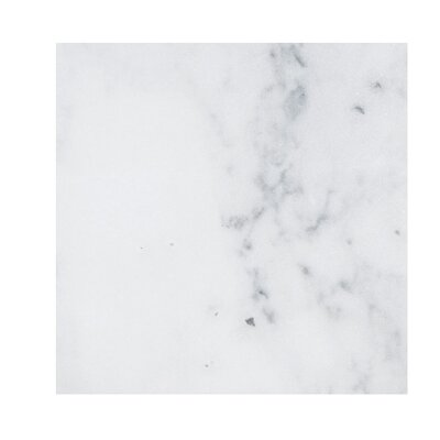 Verona Marble 18 x 18 Stone  Tile in Bianco Polished
