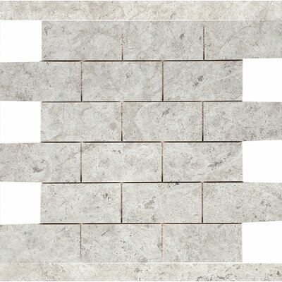 Marble 2 x 4 Stone Mosaic Tile in Antique Gray Polished