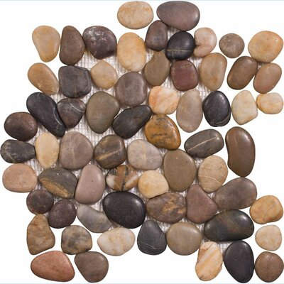 Stone Pebble Tile in Multi