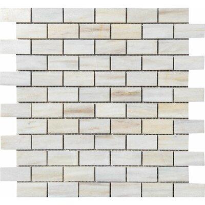 San Marino Brick Mosaic 1 x 2 Stone Mosaic Tile Polished
