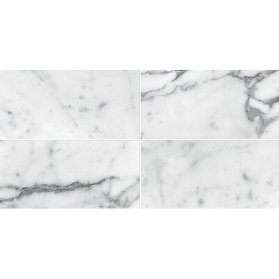 Carrara 3 x 6 Marble Subway Tile in White