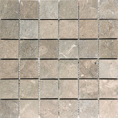 Sea Grass 2 x 2 Stone Mosaic Tile Honed