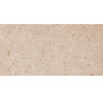 Dijon 12 x 24 Stone Field Tile in Honed Beige