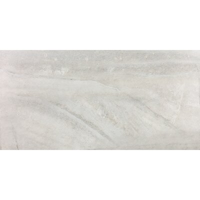 Enrichment 12 x 24 Porcelain Field Tile in Icicle