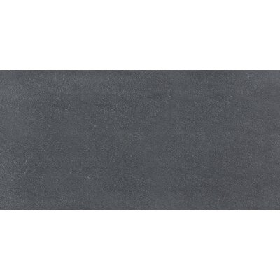 Nouveau 12 x 24 Porcelain Field Tile in Charcoal