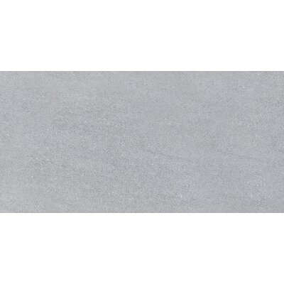 Nouveau 12 x 24 Porcelain Field Tile in Gray