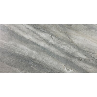 Enrichment 6 x 36 Porcelain Field Tile in Cameleon