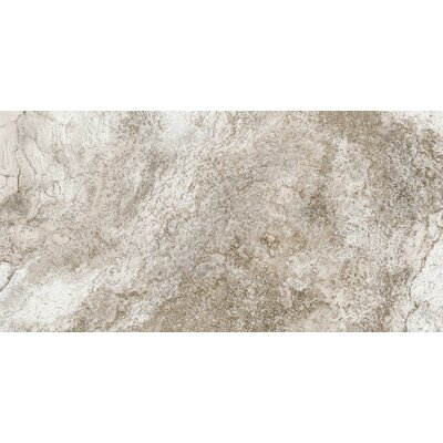 Baroque 12 x 24 Porcelain Field Tile in Brown