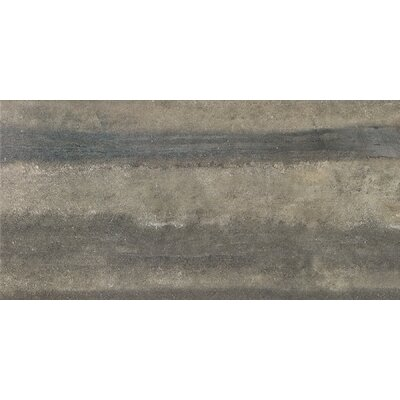 Enrichment 6 x 36 Porcelain Field Tile in Gray