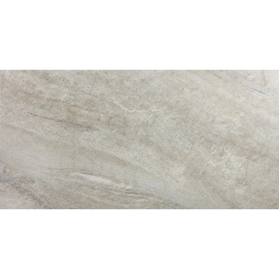 Enrichment 12 x 24 Porcelain Field Tile in Tan