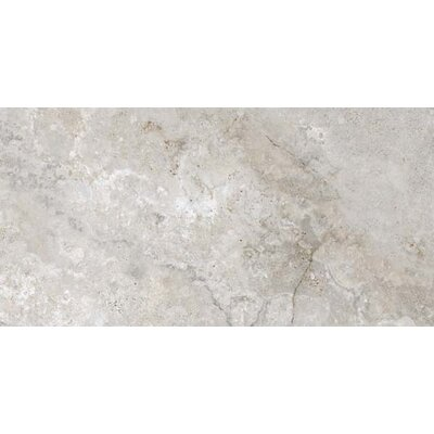 Montana 12 x 24 Porcelain Field Tile in Gray