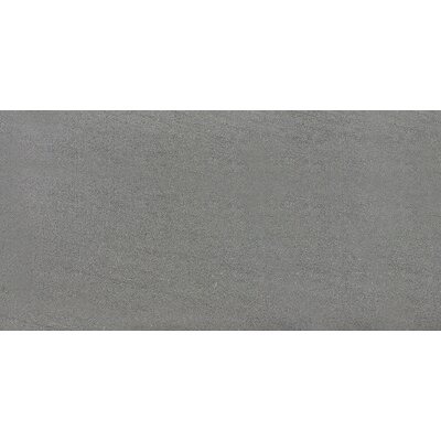 Nouveau 18 x 36 Porcelain Field Tile in Cameleon