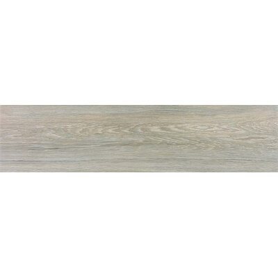 Vanderbilt 6 x 36 Porcelain Wood Look Tile in Ash