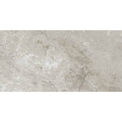 Montana 18 x 18 Porcelain Field Tile in Ivory