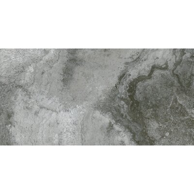 Baroque 12 x 24 Porcelain Field Tile in Ares