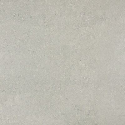 24 x 24 Porcelain Field Tile in Ash