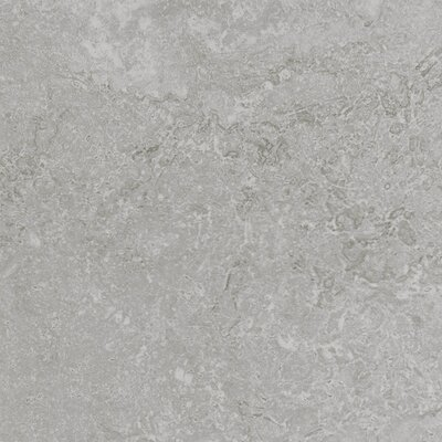 Kent 12 W x 12 Porcelain Field Tile in Warm Gray