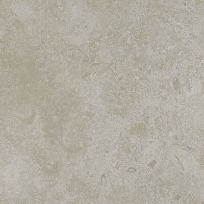 Kent 18 W x 18 Porcelain Field Tile in Subtle Ivory
