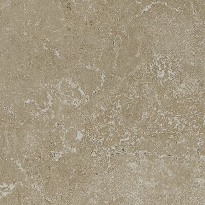Kent 12 W x 12 Porcelain Field Tile in Pale Beige