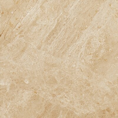 Peyton 12 W x 12  Porcelain Field Tile in Beige