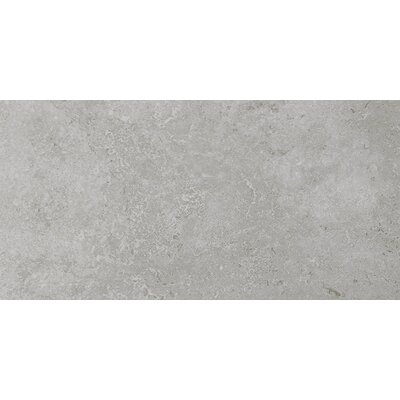 Kent 12 W x 24 Porcelain Field Tile in Warm Gray