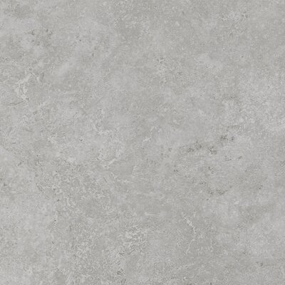Kent 18 W x 18 Porcelain Field Tile in Warm Gray
