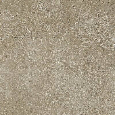 Kent 18 W x 18 Porcelain Field Tile in Pale Beige