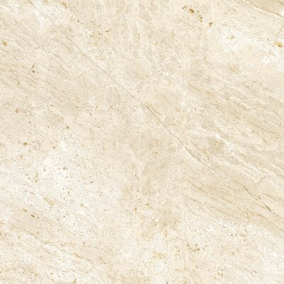 Peyton 18 W x 18  Porcelain Field Tile in Off-White