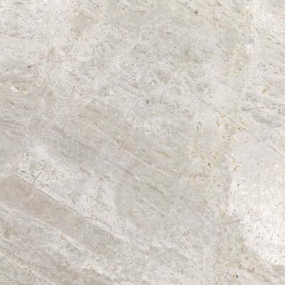 Peyton 18 W x 18 Porcelain Field Tile in Cool Gray
