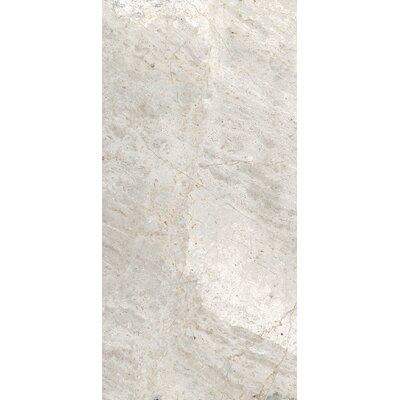 Peyton 12 W x 24 Porcelain Field Tile in Cool Gray