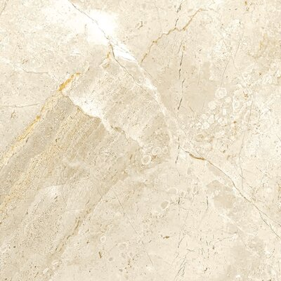 Peyton 12 W x 12  Porcelain Field Tile in Off-White