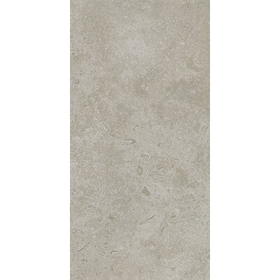 Kent 12 W x 24 Porcelain Field Tile in Subtle Ivory