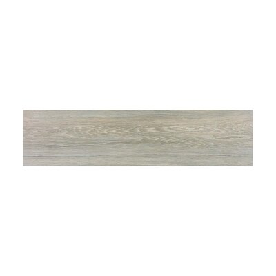 Vanderbilt 6 x 24 Porcelain Wood Look Tile in Anchor