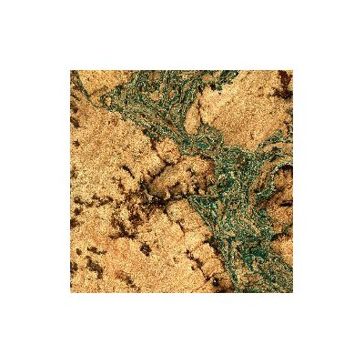 "11-7/8"" Cork Hardwood Flooring In Burl With Green Tones"