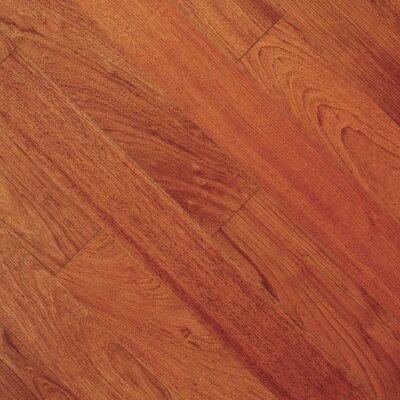 Imperial 4-3/4 Engineered Brazilian Cherry Hardwood Flooring in Brazilian Cherry