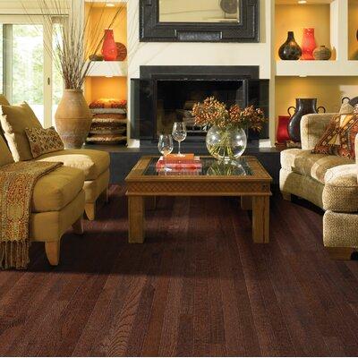 Paradise 2-1/4 Solid Oak Hardwood Flooring in Breeze