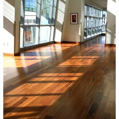 Imperial 4-3/4 Engineered Tigerwood Hardwood Flooring in American Hickory